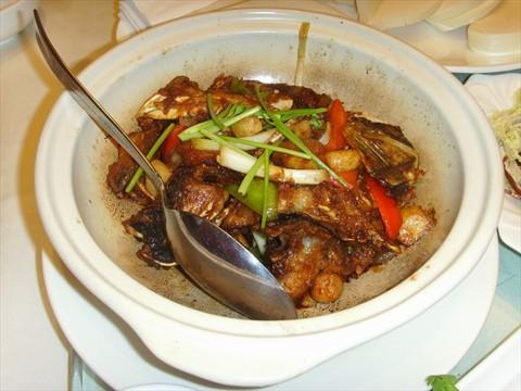辣酒煮小海螺 0 辣酒煮小海螺 ,海螺新鲜,味道微辣,不错的一道菜图片