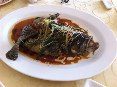 渔濠海鲜酒楼的海鲜大餐 - 渔濠海鲜酒楼评价 - 广州